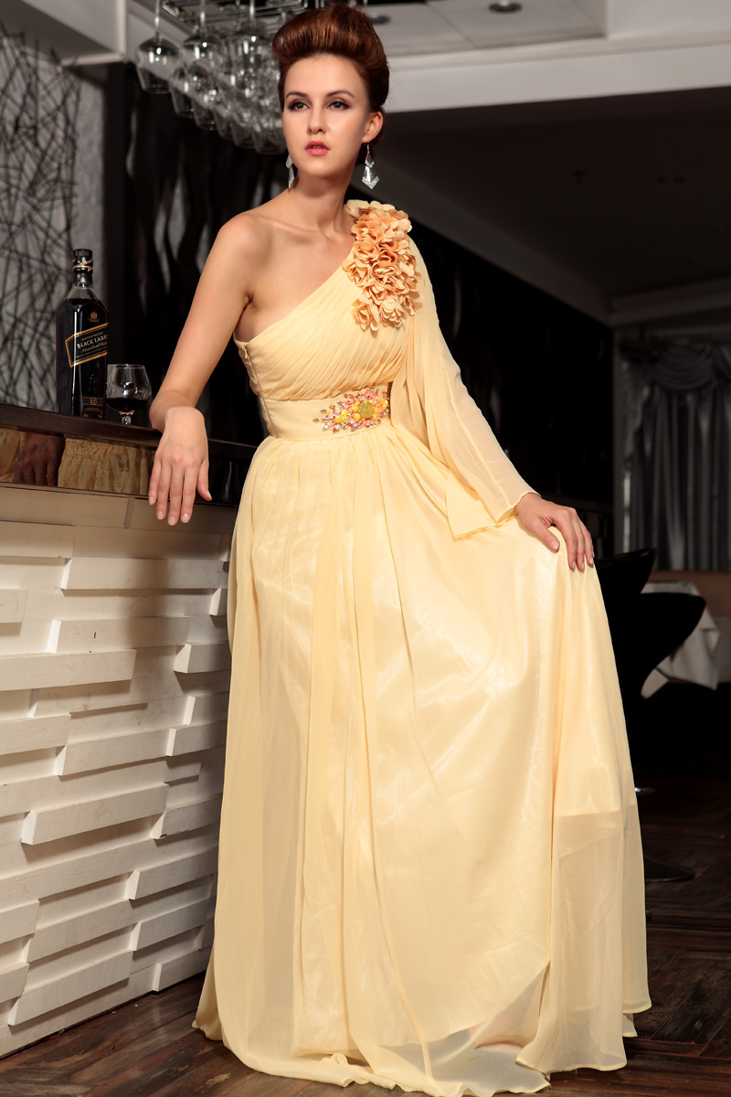 Celebrity Inspired One Sleeve Chiffon Formal Dress Evening Gown ...
