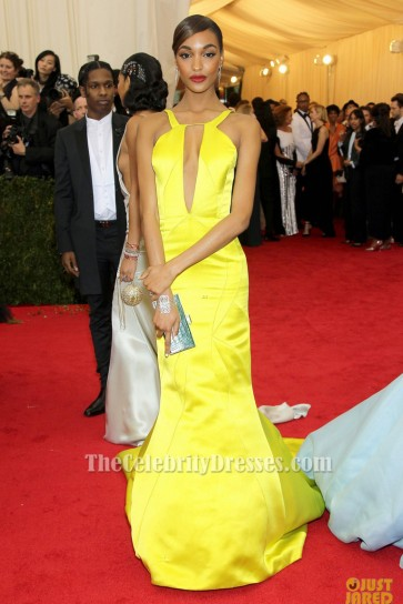 Jourdan Dunn Yellow Evening Dress 2014 Met Ball Red Carpet Gown TCD6147