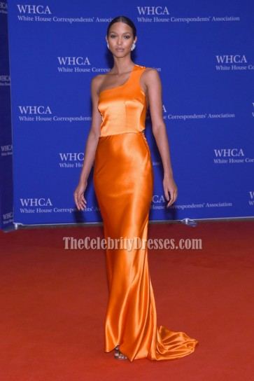 Lais Ribeiro Orange One Shoulder Backless Evening Dress 2016 White House Correspondents Association Dinner  2
