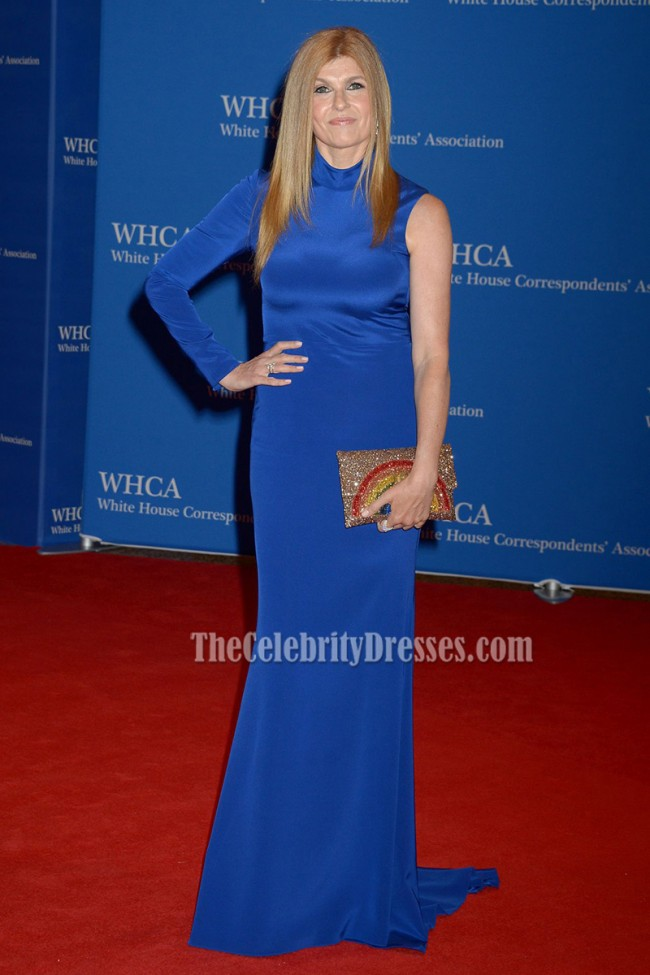 Connie Britton Blue Single-sleeve Long Evening Prom Gown 2016 White House Correspondents ...