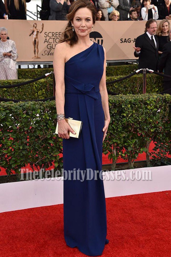 Diane Lane Navy One Shoulder Evening Dress 2016 Sag Awards