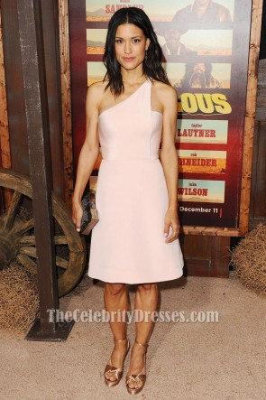 JULIA JONES Pink One Shoulder Party Dress Ridiculous 6 Premiere TCD6450