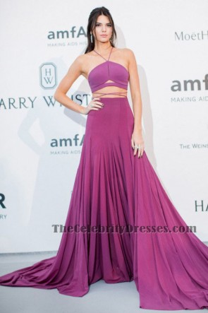 Kendall Jenner Purple Two Pieces Evening Dress Cannes amFAR gala Red Carpet TS6109