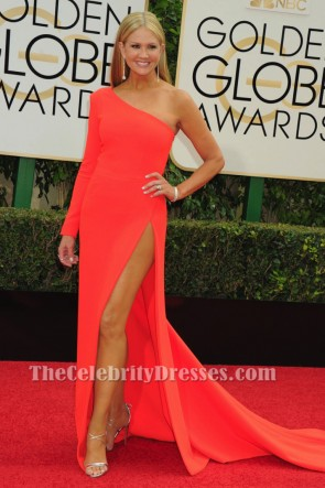 Nancy O'Dell One Sleeve Formal Dress 73rd Annual Golden Globe Awards 2016 TCD6517