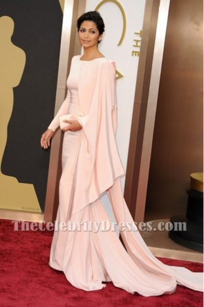 Camila Alves Elegant Pink Long Evening Prom Dress Oscars 2014 TCD6818
