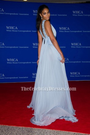 Chanel Iman Light Sky Blue Evening Dress 2015 White House Correspondents' Association Dinner TCD6206