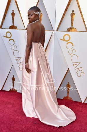 Danai Gurira 2018 Oscar Pink Strapless Formal Dress Evening Gown TCD7786