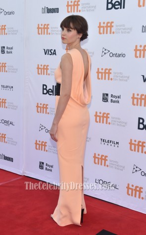 Felicity Jones Formal Dress 2014 Toronto International Film Festival TCD6070