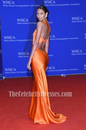 Lais Ribeiro Orange One Shoulder Backless Evening Dress 2016 White House Correspondents Association Dinner TCD6757