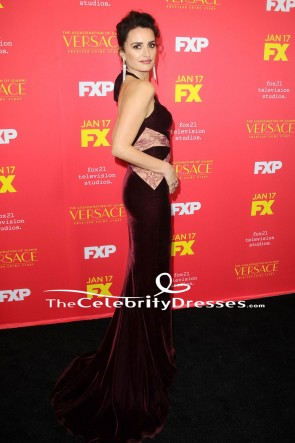 Penelope Cruz Burgundy Velvet Halter Evening Gown Formal Dress TCD7671