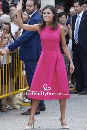 Queen Letizia of Spain Fuchsia Cocktail Dress Reina Letizia Awards