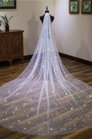 Sparkly Sequins Cathedral Bridal Veils