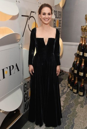 Natalie Portman 2018 Golden Globes Black Long Sleeves A-line Prom Evening Dress