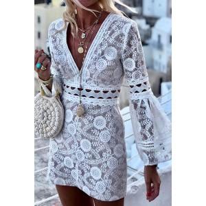 Lace Cut Out Bodycon Dress