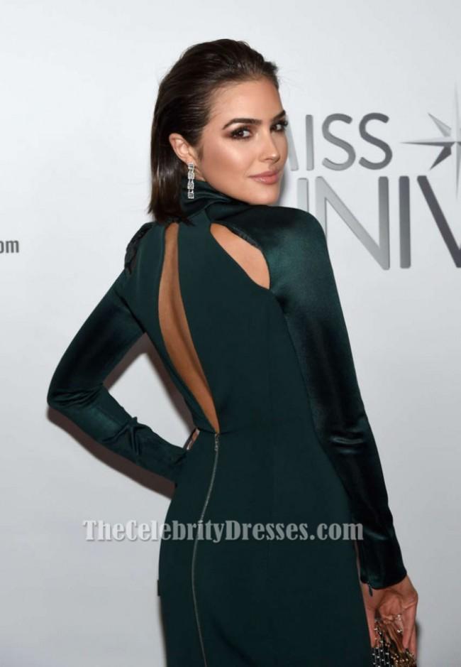 Olivia Culpo Langarm Abendkleid 2015 Miss Universe Festzug Kleid ...