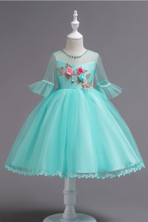 Ball-Gown Embroidered Tulle Girl Dress