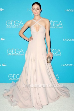 Emmy Rossum Sexy Long Backless Evening Prom Dress 17th Costume Designers Guild Awards 5