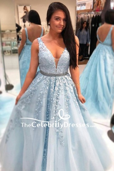 Light Sky Blue Deep V-neck Wedding Ball Gown With Appliques