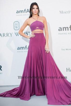 Kendall Jenner sexy robe de soirée en deux pièces Cannes amFAR gala tapis rouge