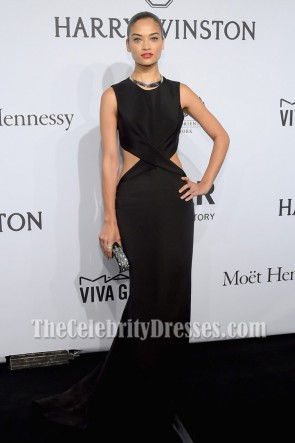 Shanina Shaik Robe de soirée sans manches noire 2015 amfAR New York Gala