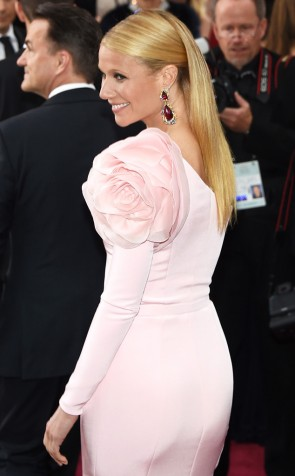 Gwyneth Paltrow 2015 Oscars Light Rose robe de tapis une manche rouge