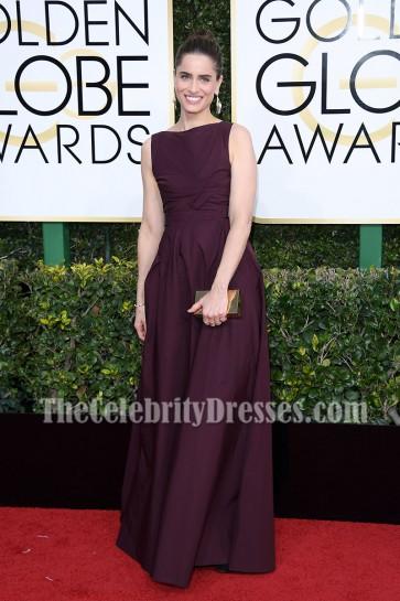 Amanda Peet Long Backless Evening Prom Gown 2017 Golden Globes