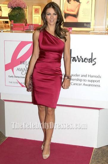 ELizabeth Hurley One Shoulder Cocktail Dress breast cancer awareness function