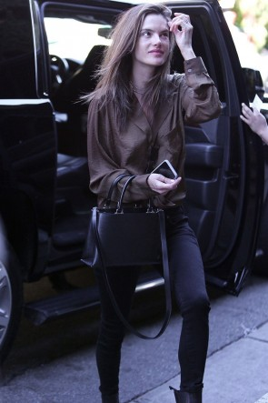 Alessandra Ambrosio Brown Long Sleeves Shirt