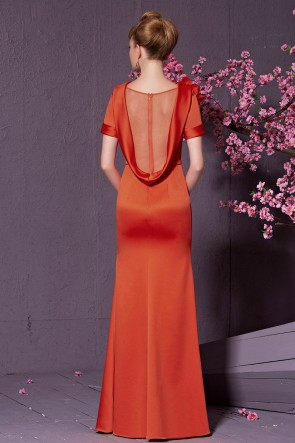 Celebrity Inspired Short Sleeve Formal Dress Evening Gown TCDC30925