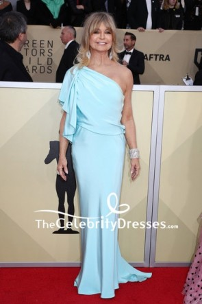 Goldie Hawn Light Sky Blue One-shoulder Evening Prom Dress 2018 SAG Awards Red Carpet