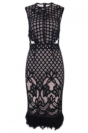 Sexy Black Cut Out Lace Bodycon Dress