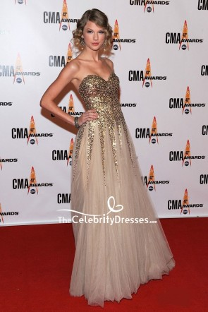 Taylor Swift Gold Sparkly Strapless Evening Dress 2009 CMA Awards TCD8287