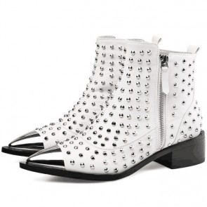 Women's Pointed Toe Low Heel Ankle Boots With Rivet Zipper Shoes