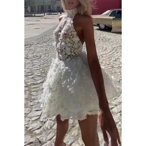White Sexy Lace Backless Mini Dress