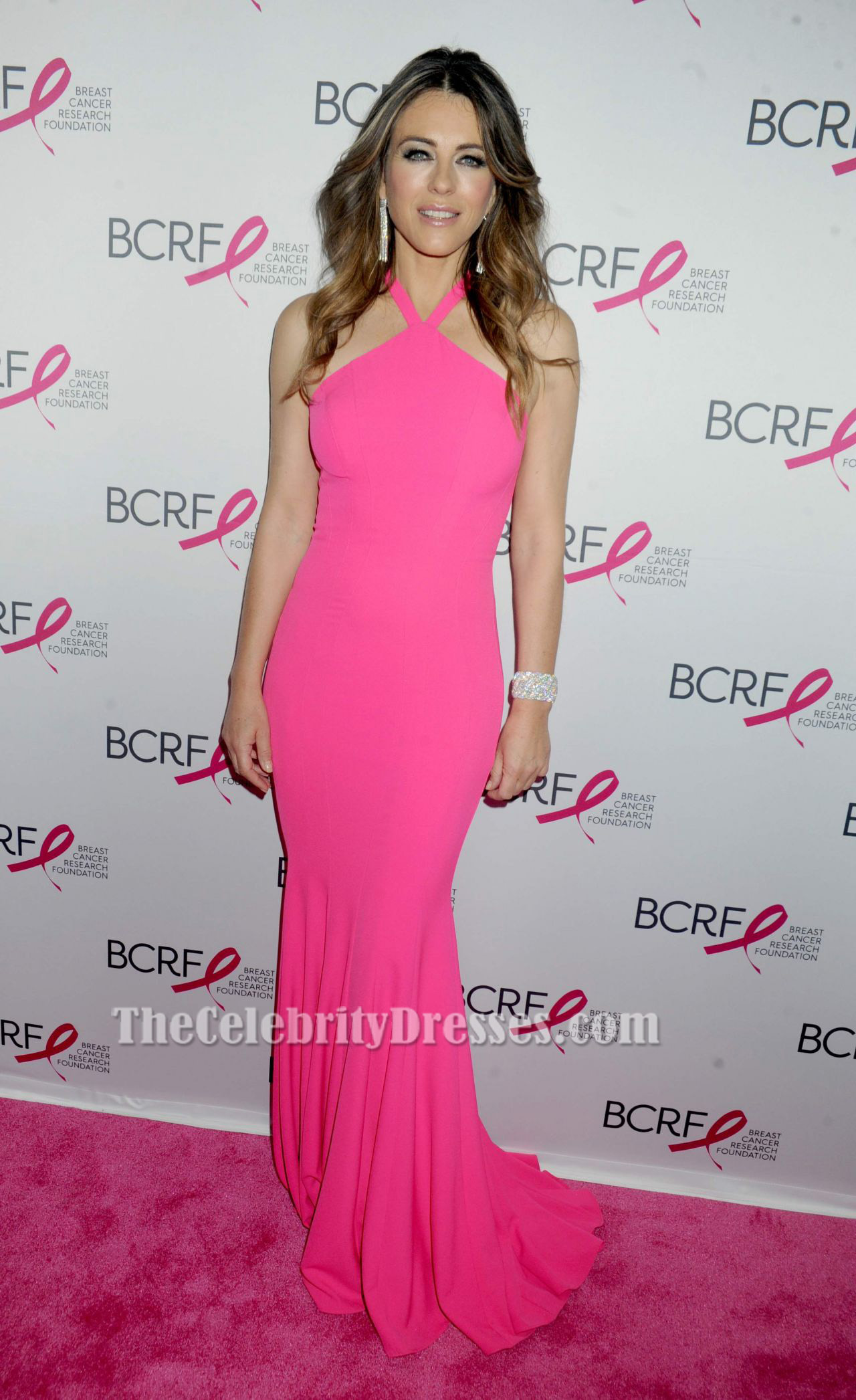 Elizabeth Hurley Hot Pink Evening Gown Party Prom Dresses ...