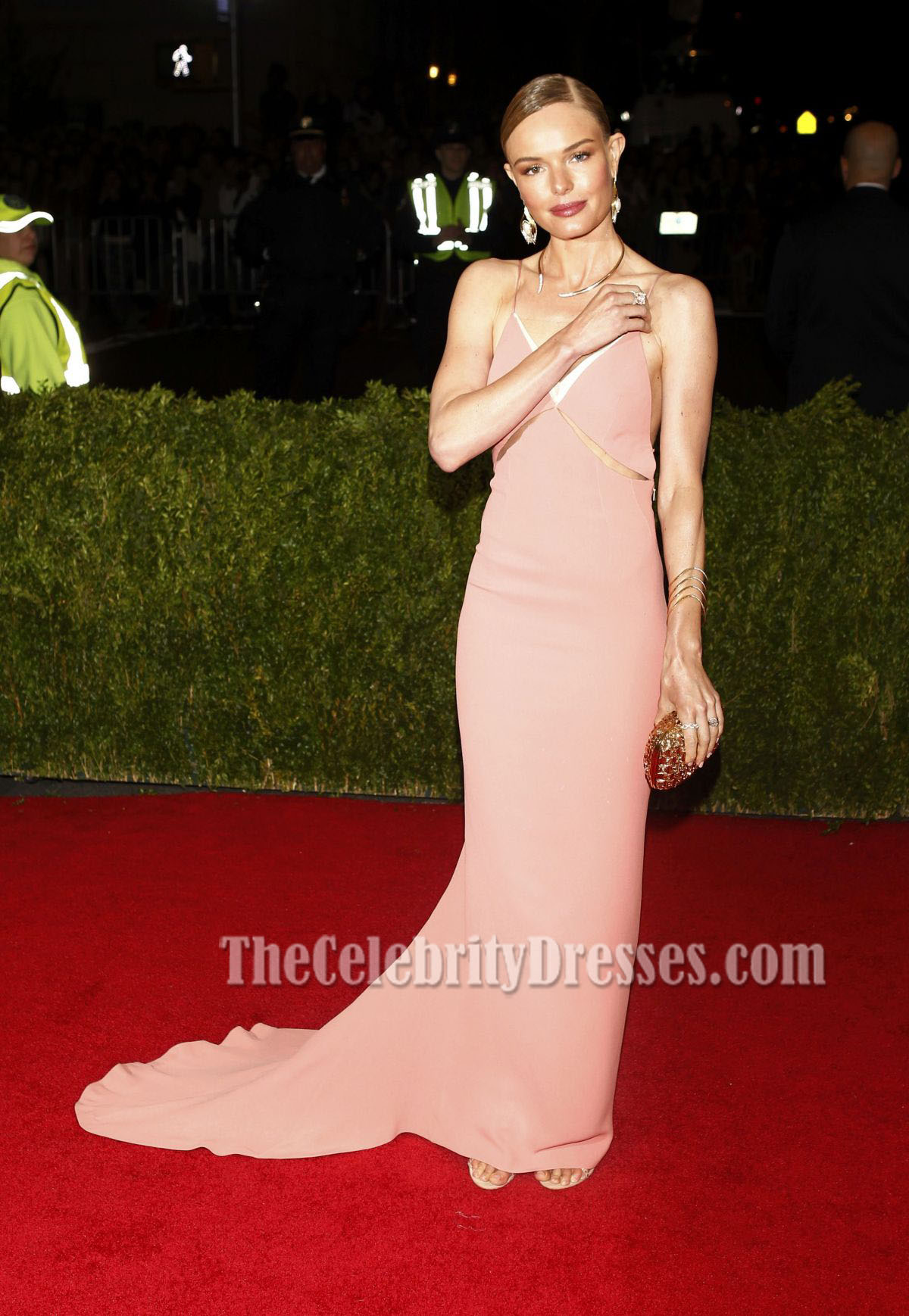 Kate Bosworth Pink Backless Prom Dress 2014 Met Gala Red Carpet ...