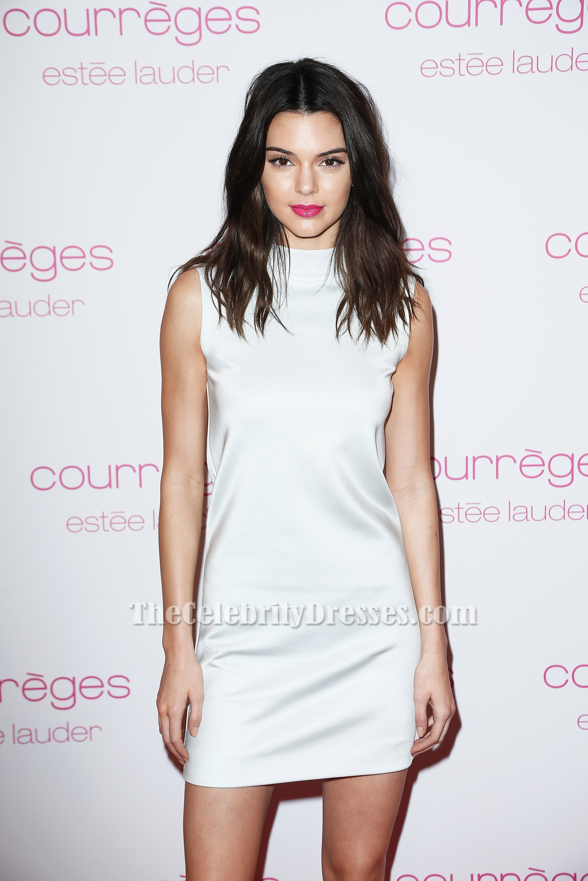 Kendall jenner birthday dress buy