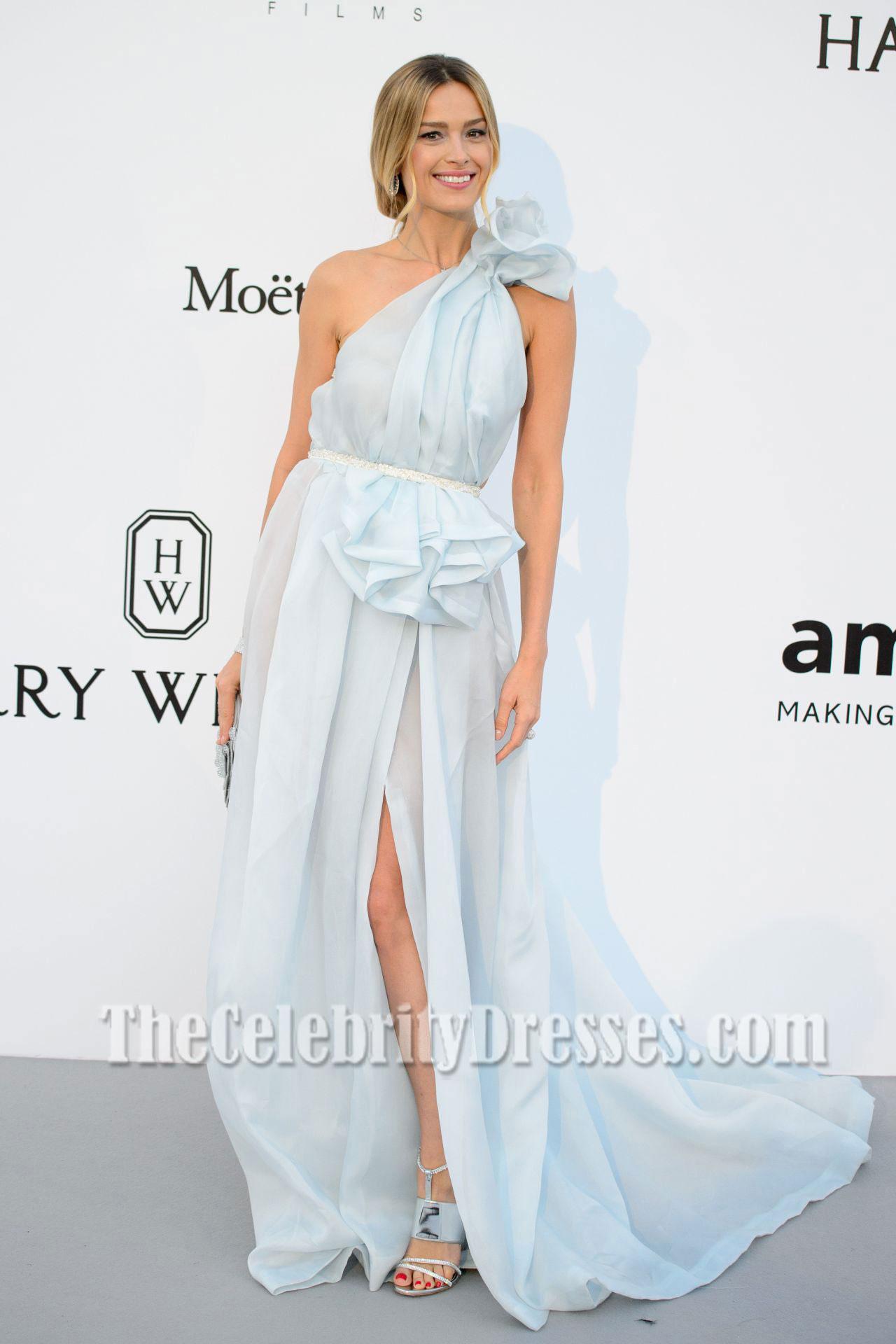 Petra Nemcova Baby Blue e shoulder Ruffle Slie Evening Dress amfAR