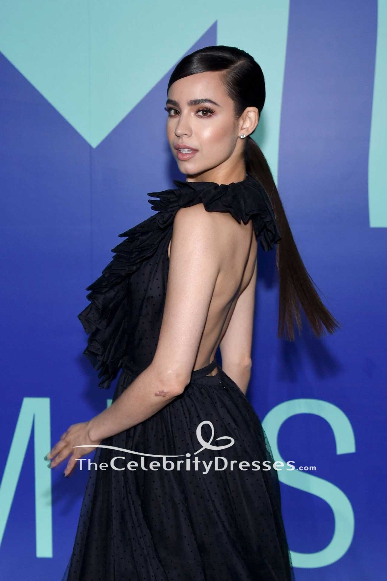 086c1de70bb Sofia Carson Black Backless Halter Ball Gown Dress 2017 MTV Video Music  Awards - TheCelebrityDresses
