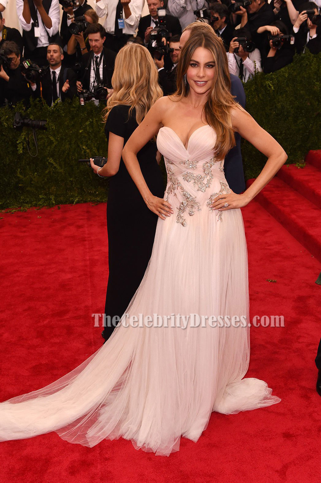 Sofia Vergara Tulle Strapless Formal Evening Dress 2015 Met Gala Red ...